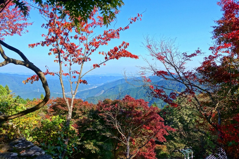Mt Mitake Autumn Colors